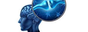 Filipek, neuroplastyczność, mozliwości