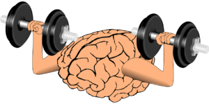 neuroplastyczność, ćwiczenia mózgu, neurorehabilitacja